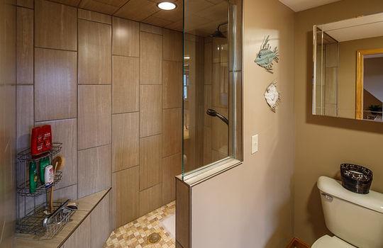 Farmington shower