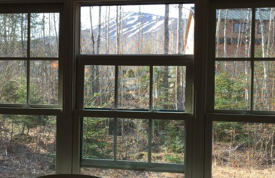 VOG Window view