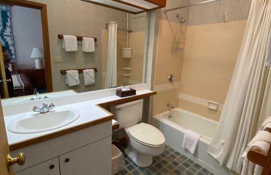 SGTI 370 bathroom 2
