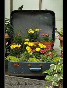 nanas-making-memories-suitcase-planter