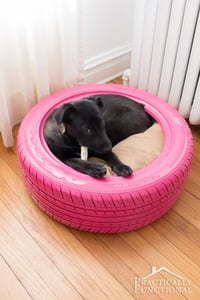 tire-to-dog-bed-practically-functional