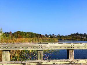 Landfall - Intracoastal Waterway View