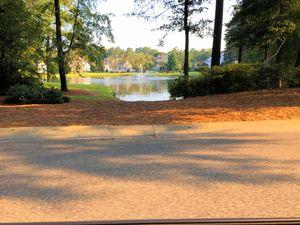 Landfall - Pond View