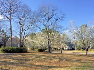 Bayshore Estates - Dogwood Trees