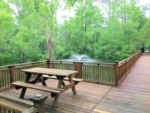 Demarest Landing - Walking Trail and Sitting Area