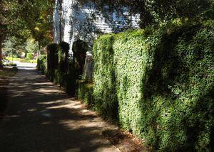 Historic District - Streetscape