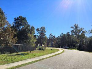 Majestic Oaks - Streetscape