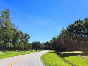 Pine Valley Estates - Streetscape