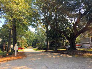 Oak Village - Streetscape