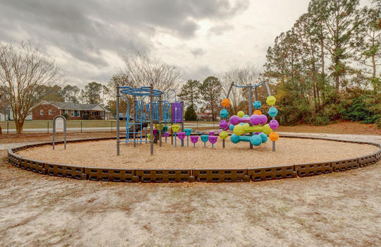 Kings Grant Park Updated - Playground