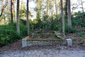 Buchoi Plantation