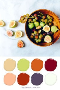 Guava and Grapes Paint Color Palette - The Cameron Team
