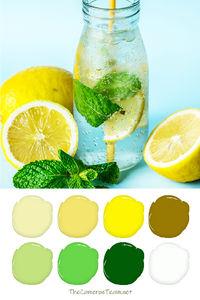 Lemon Water Color Palette - The Cameron Team