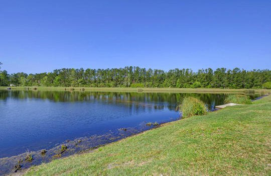 Pond and Walking Trail