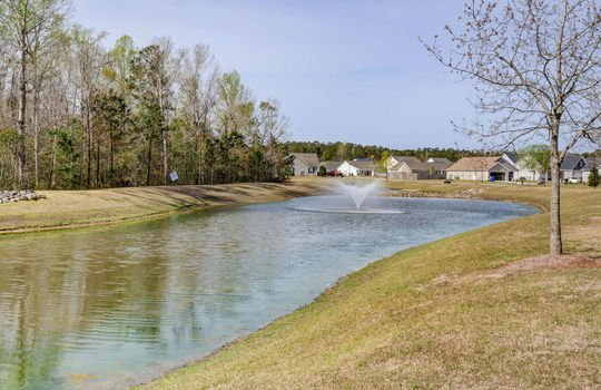 Lanvale Forest – Community Pond