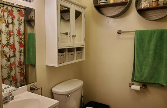 5207 Fitzgerald Dr-Full Bathroom 2