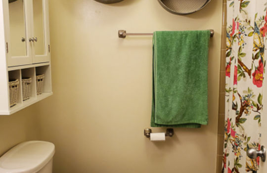 5207 Fitzgerald Dr-Full Bathroom
