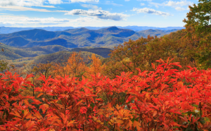 Fall in Highlands NC