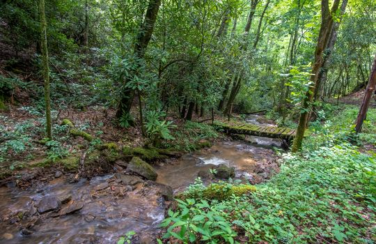 412-Butterfly-Cove-Franklin-NC-58