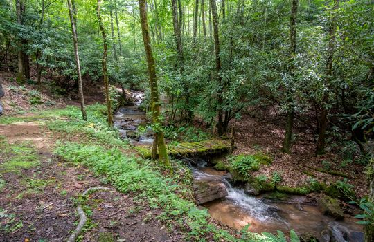 412-Butterfly-Cove-Franklin-NC-59