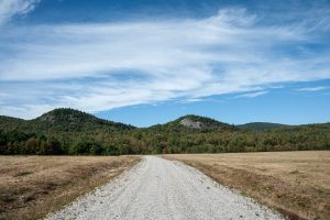 Road at Otter Brook