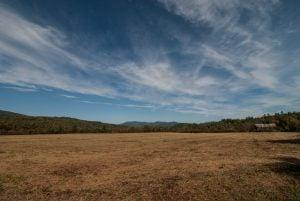 Otter Brook fields