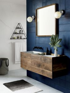 Bathroom with blue accent walls
