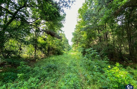 100-Marion-Clear-Creek-114