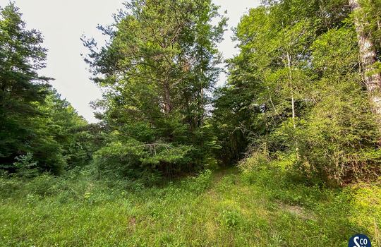 100-Marion-Clear-Creek-115